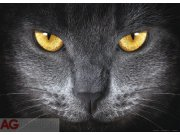Fototapeta AG Eyes FTNM-2640 | 160x110 cm Fototapety vliesové - Vliesové fototapety AG