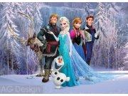 Vliesová fototapeta AG Ledové Království FTDNM-5227 | 160x110 cm Fototapety pro děti