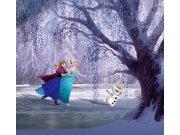 Foto závěsy Ledové království FCSXL-4300, 180 x 160 cm Závěsy