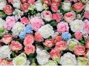 Fototapeta AG Flowers FTNXXL-2428 | 360x270 cm Fototapety vliesové - Vliesové fototapety AG
