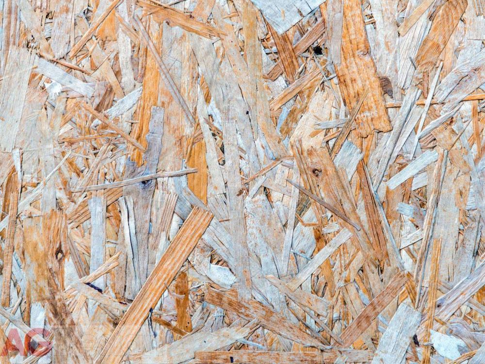 Fototapeta AG Petals FTNXXL-2431 | 360x270 cm - Fototapety vliesové