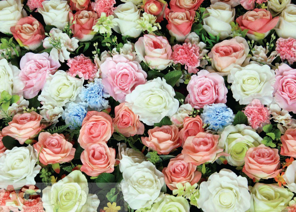 Vliesová fototapeta AG Design Roses FTNM-2653, rozměry 160 x 110 cm