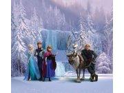 Foto závěsy Ledové království FCSXL-4303, 180 x 160 cm Závěsy