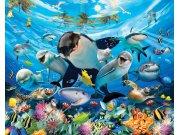 3D fototapeta Walltastic Moře 43190 | 305x244 cm Fototapety pro děti