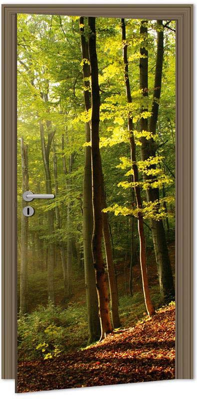 Samolepící fototapeta na dveře DL003 Forest, 95x210 cm - Fototapety na dveře