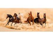 Vliesová fototapeta AG Stádo koní FTNH-2748 | 202x90 cm Fototapety vliesové - Vliesové fototapety AG