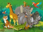 Fototapeta AG Zvířata v Africe FTNXXL-2420 | 360x270 cm Fototapety pro děti