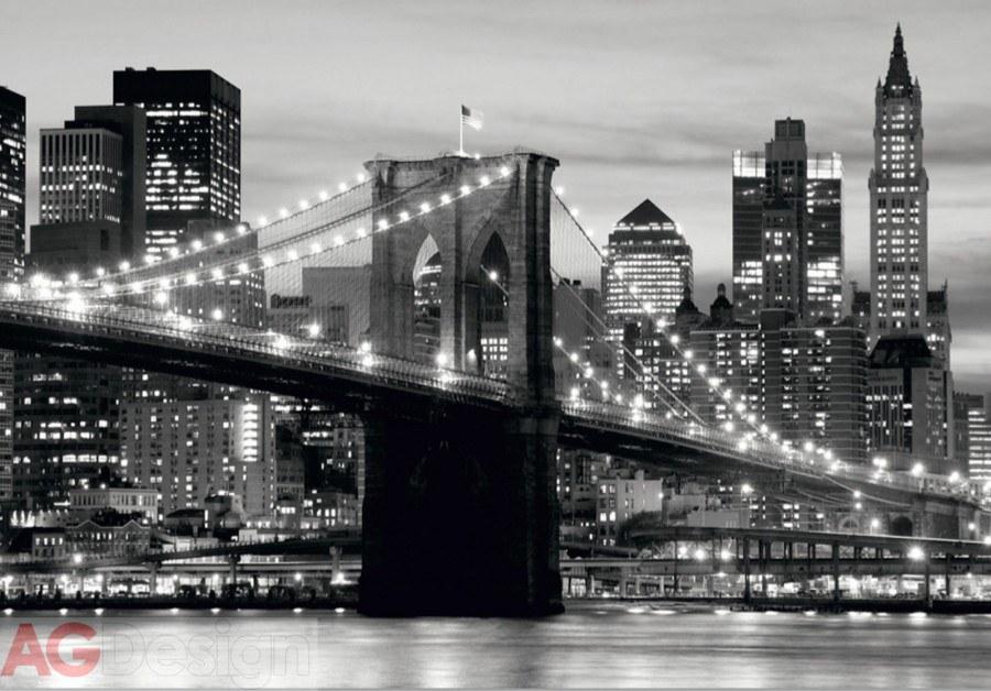 Papírová fototapeta Brooklyn bridge black AG design FTS-0199, rozměry 360 x 254 cm